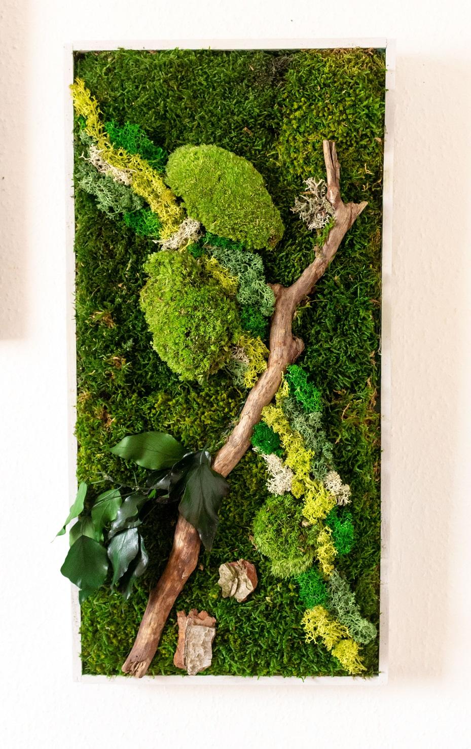 Tableau végétal sur mesure